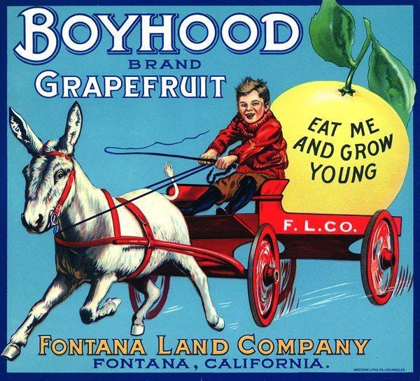 boyhood_0