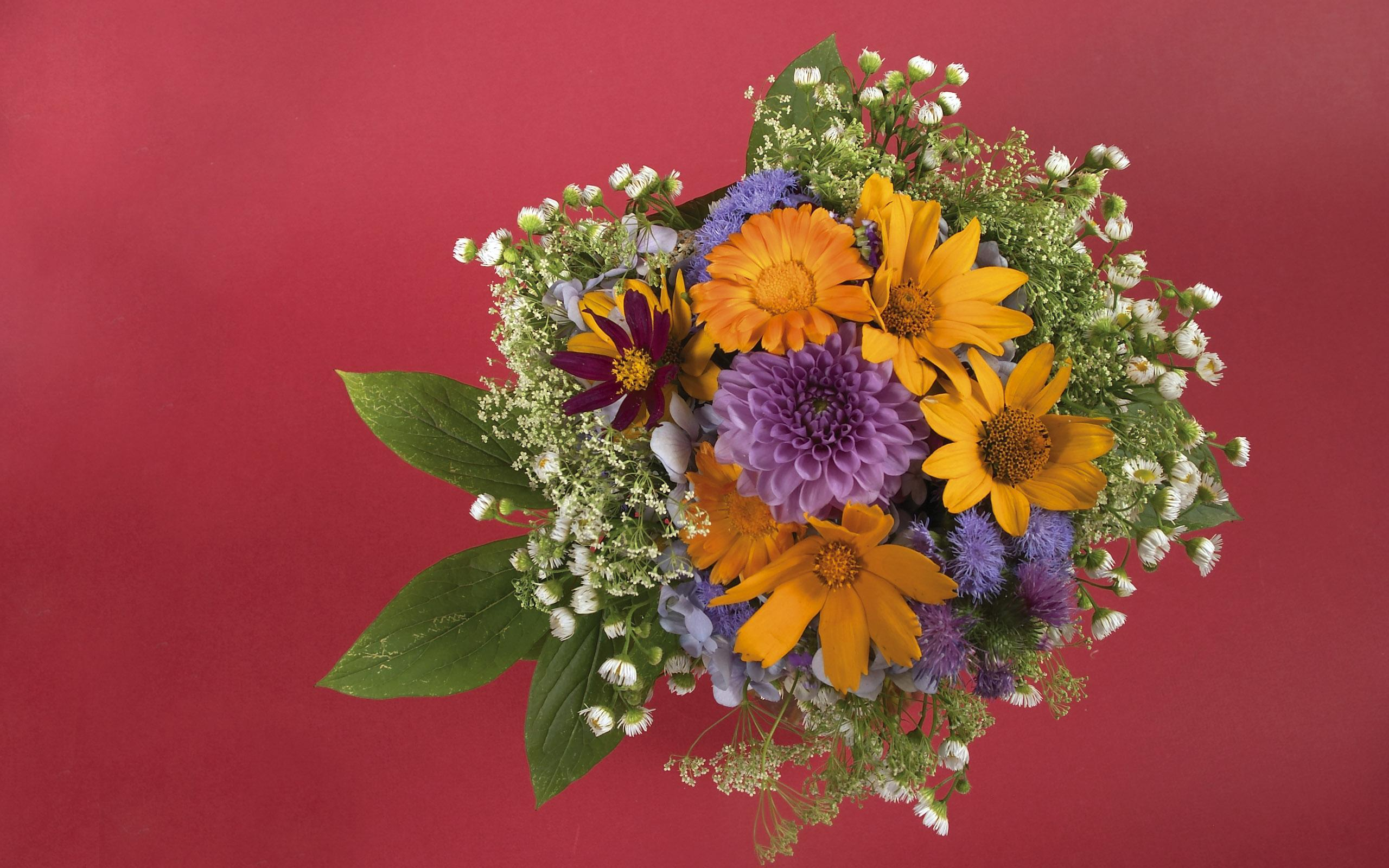 flowers_34