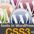 Customize Fonts in WordPress