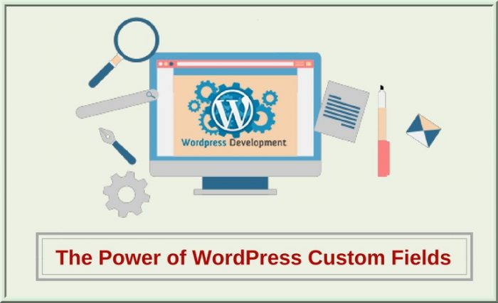 Power of WordPress Custom Fields