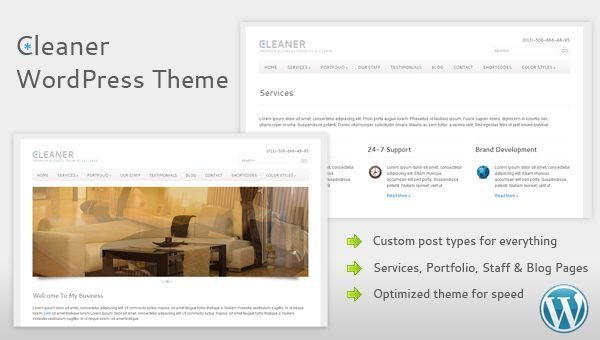 cleaner business WordPress theme