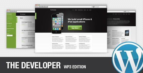 The Developer WP3 Edition
