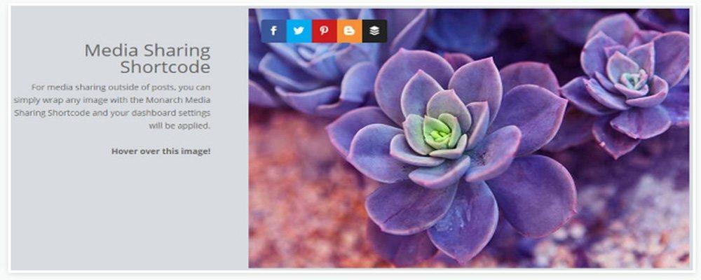Social Media - Element in Your Restaurant WordPress Theme