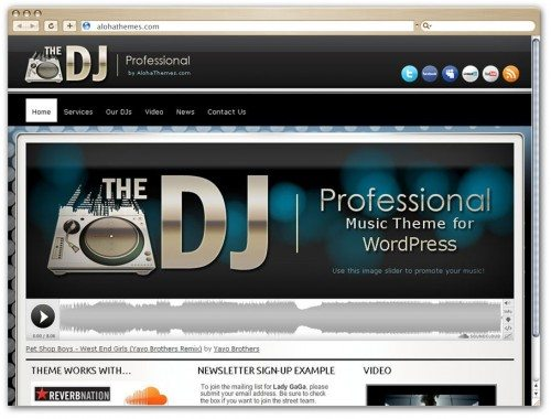 DJ professional theme