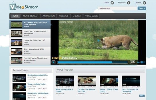 wordpress-video-gallery