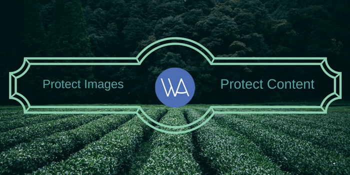 protect images and content from theft