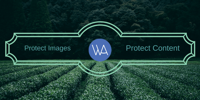 How to Protect Images and Content on WordPress Powered Website