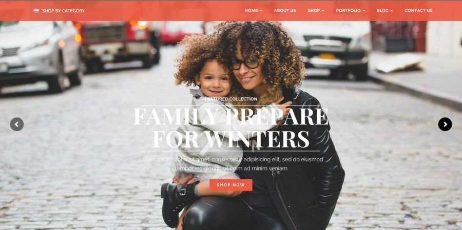Atlantic - eCommerce Theme for WP