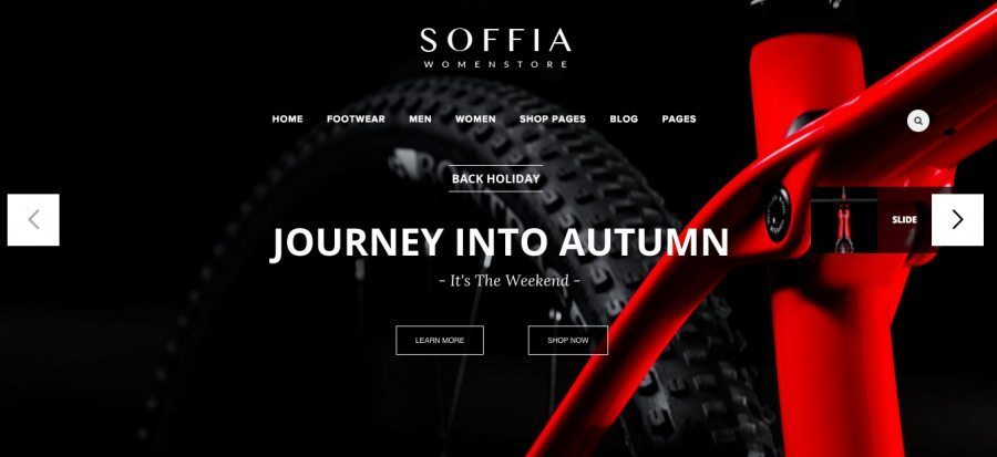 WordPress Business Theme with e-Commerce - Soffia