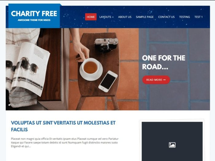 Charity Theme – one of great Free charity WordPress Themes