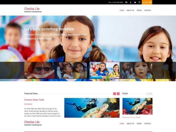 Charitas Lite - one of awesome Free charity WordPress themes