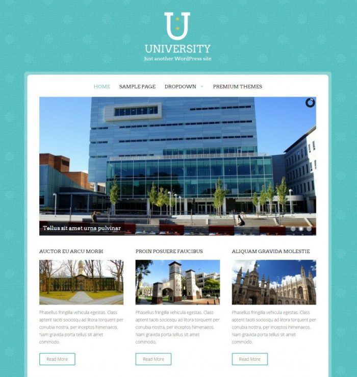 One of Good free Education WordPress Themes - University