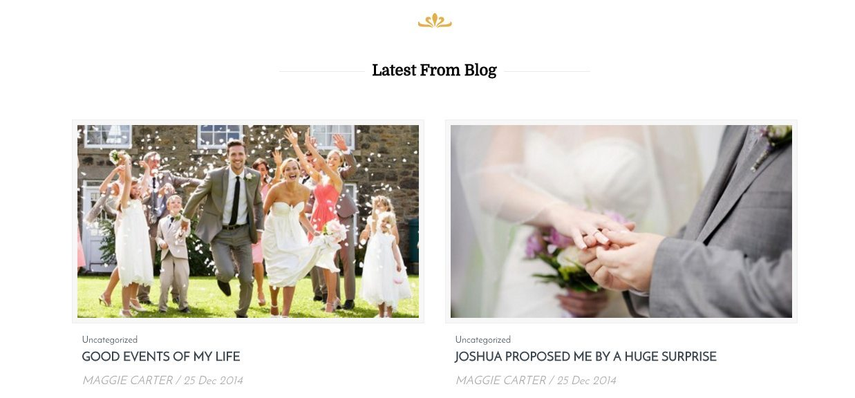 Blog - WP Theme Review