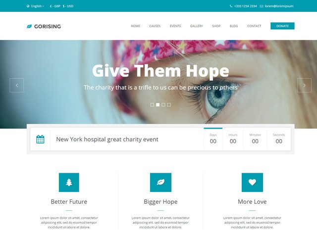 GoRising - Great Non-Profit WordPress Theme