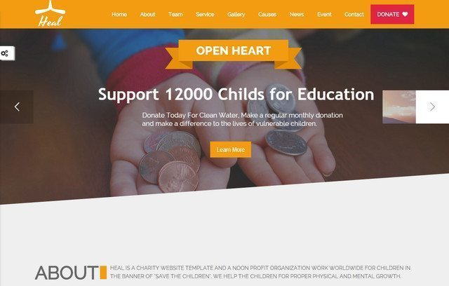 A Best WordPress Charity Theme - Heal