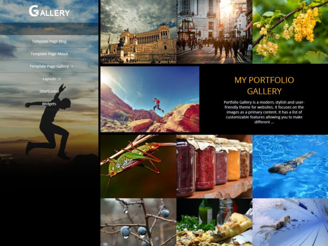 WordPress blog optimization - Portfolio Gallery Theme