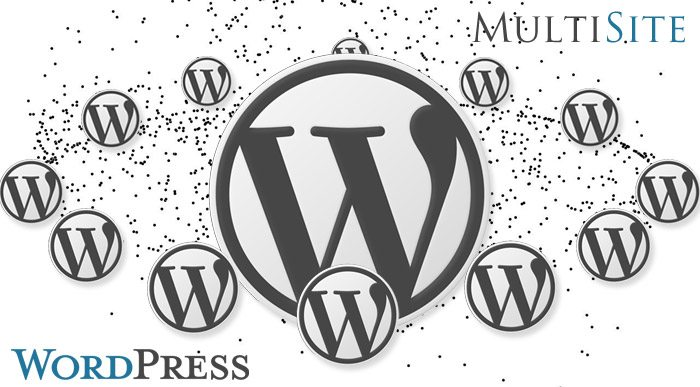 decomments-wordpress-multisite