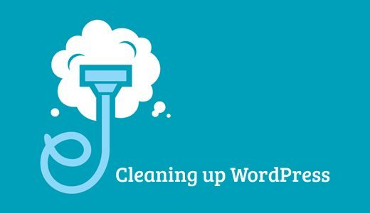 Clean up WordPress Database