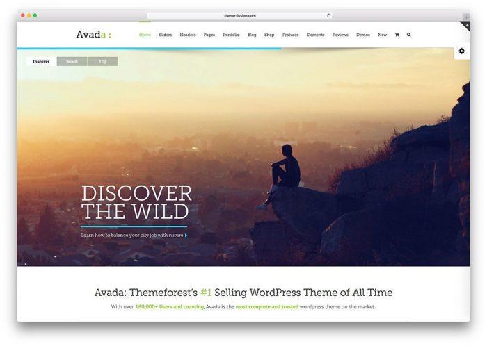 Best WordPress Selling Theme Avada