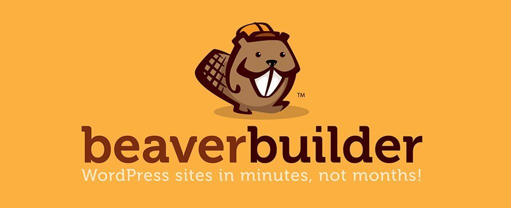 Beaver Builder Review – Is It Really Worth The Hype
