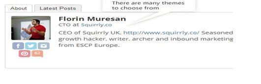 Star Box Author Bio Plugin