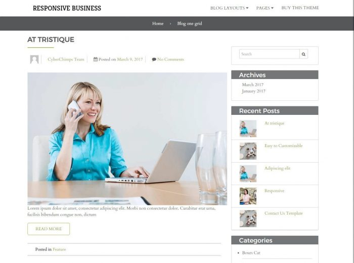 Responsive Business Theme Blog One Grid