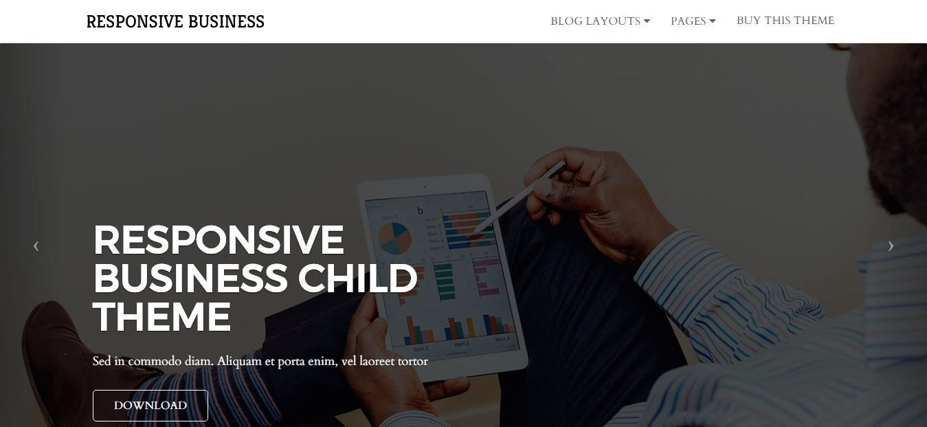 Responsive Business Theme Review and In Depth Analysis