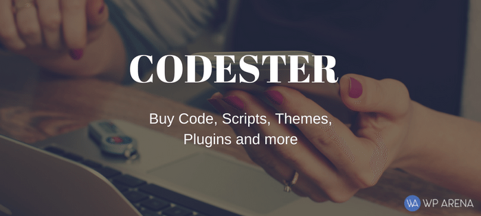 Codester Review