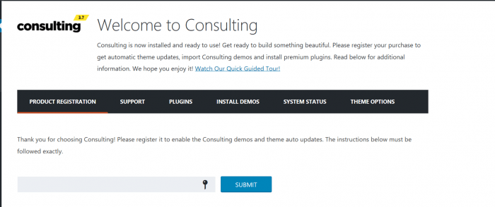 Consulting Theme Registration