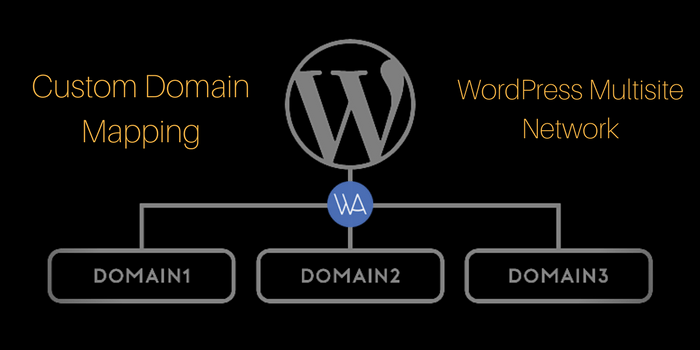 How To Do Custom Domain Mapping in WordPress Multisite Network