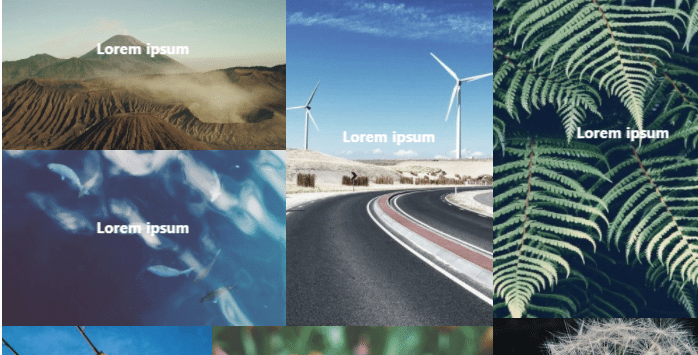 WordPress Gallery Plugin Modula Margins