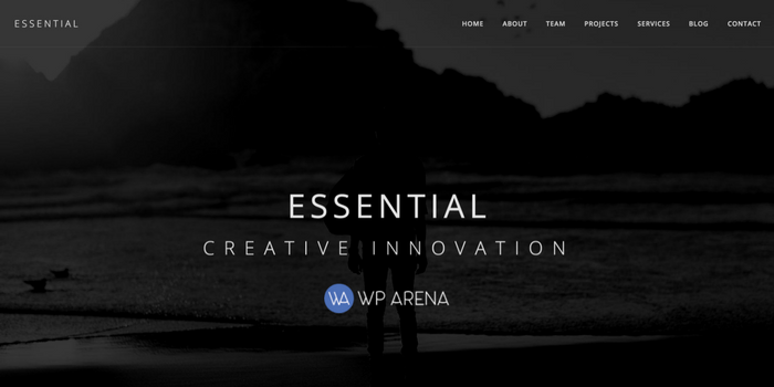 Essential – The Minimalist WordPress Theme Review