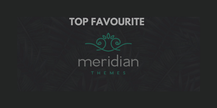 Our 6 Favourite Templates From Meridian Themes