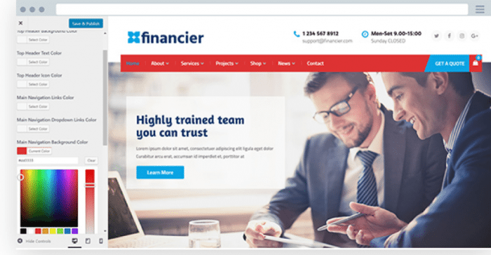Financier Customizations Panel