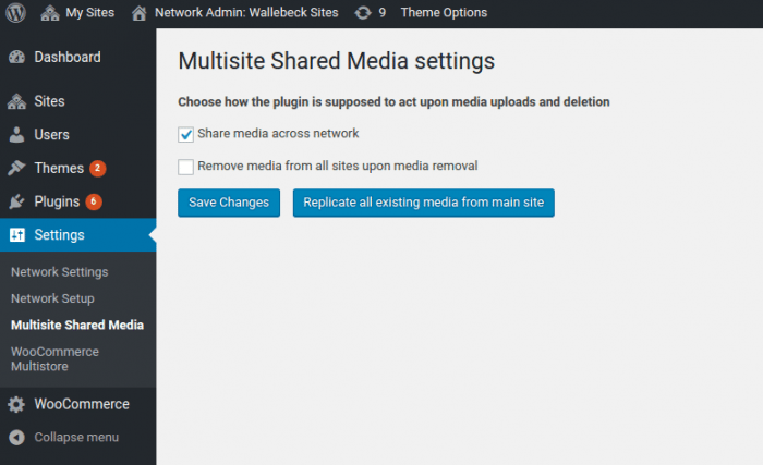 msm-settings-page