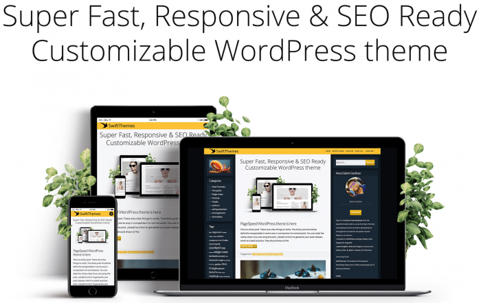 PageSpeed Responsive Theme