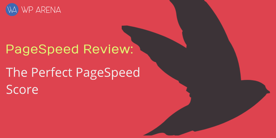 pagespeed-review