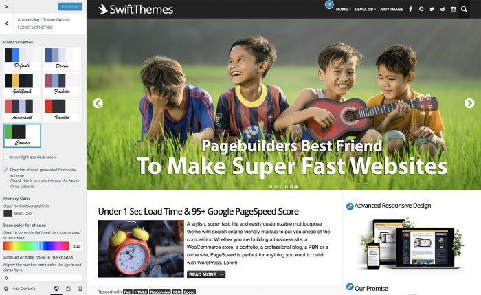 PageSpeed theme review color schemes