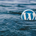 wordpress site more professional