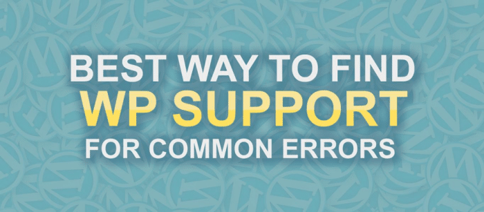 WordPress common errors